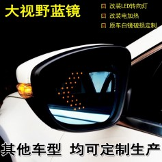 Side Mirror Lens w Signal Indicator